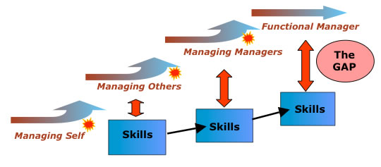Skills Often Lag Behind Career Progression