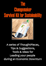 The  Changemaker  Survival Kit for Sustainability